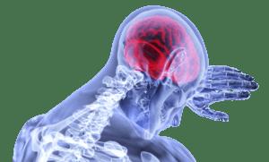 Quels sont les effets du stress sur le cerveau ?